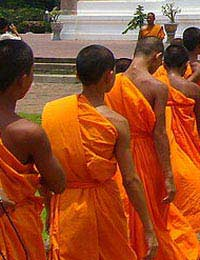 Monks Meditation Brain Brain Skills